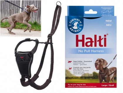 HALTI No Pull Harness black L