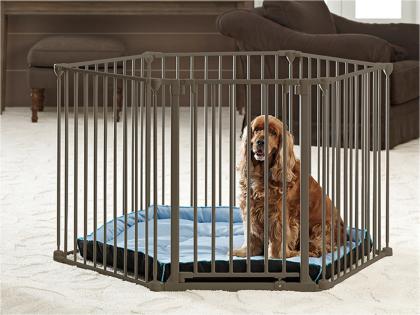 Dog Park de Luxe
