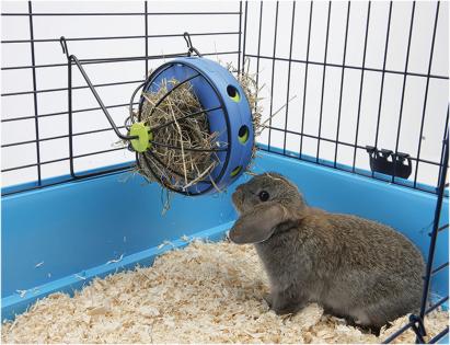 Roue à nourriture rongeur Bunny