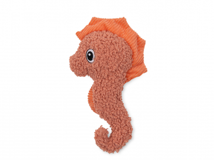 Zita the sea horse