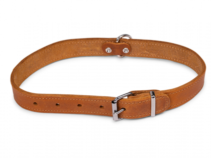 Collar oiled leather cognac 60cmx25mm XL
