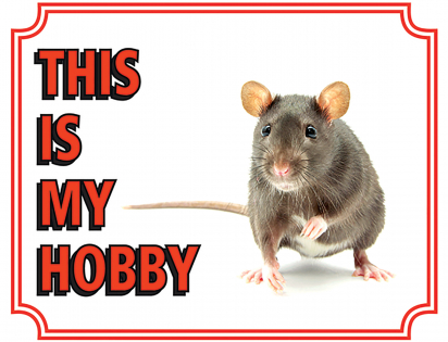 Warning sign rat