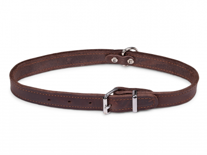 Collar oiled leather brown 52cmx22mm L