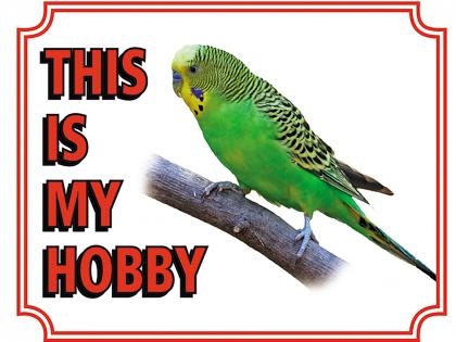 Warning sign parakeet
