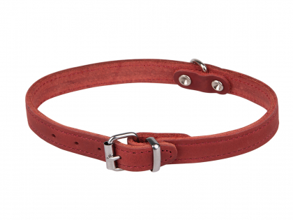 Collar oiled leather red 37cmx14mm S