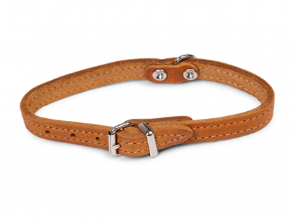 Collar oiled leather cognac 32cmx12mm XS