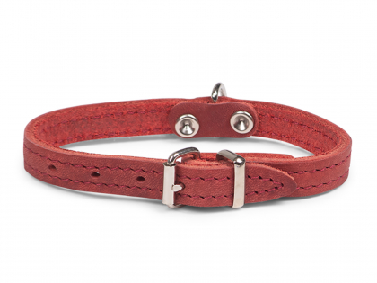 Collar oiled leather red 27cmx12mm XXS