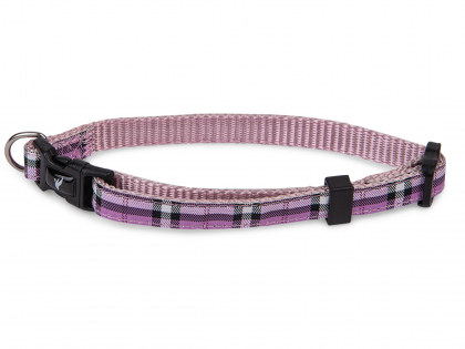 Collar dog nylon Tartan purple 13-20cmx10mm XS