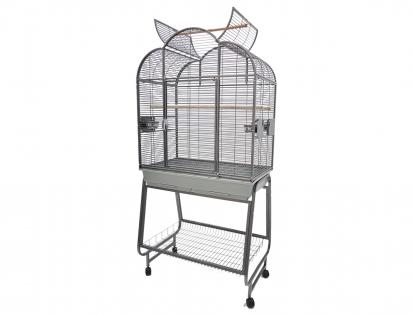 Cage parrot Adam
