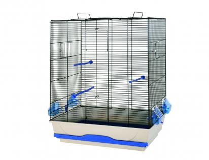 Cage little bird Ambra