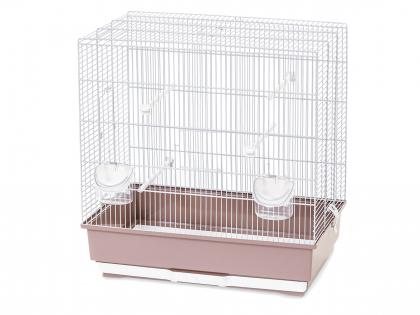 Cage little bird Moira