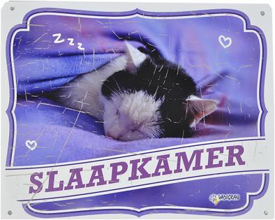 Waakbord kat NL