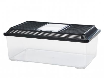Terrarium plexiglass Fauna Box