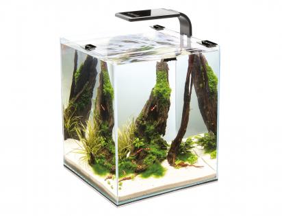 Aquarium Shrimp Set Smart 20