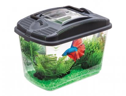 Aquarium Betta Kit