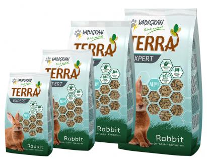 TERRA EXPERT Timothy rabbit