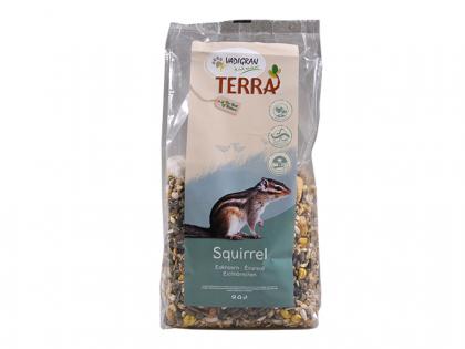 TERRA Squirrel