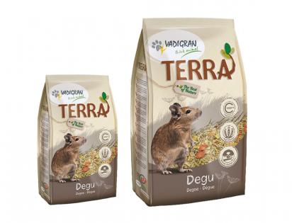 TERRA Degu
