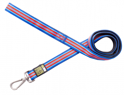 Leash Hampton Strip Blue M 20mmx120cm