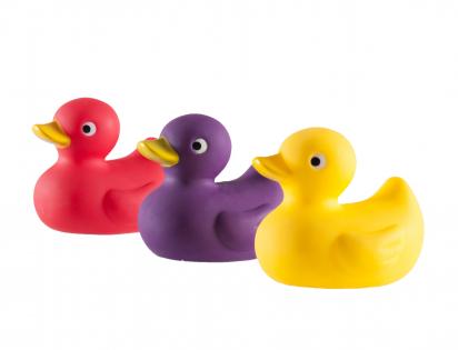 Squeaker duck