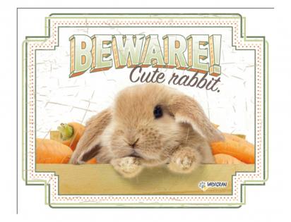 Warning sign rabbit