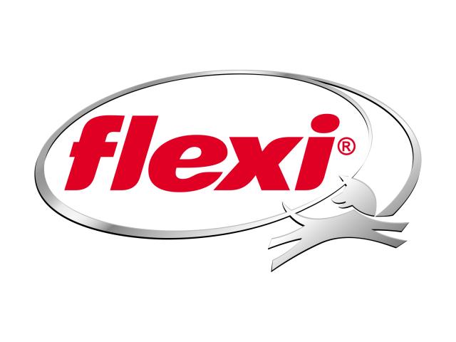 Logo_Flexi_1600x1200px
