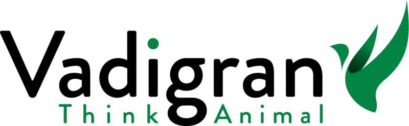 Vadigran-corporate-rvb.jpg