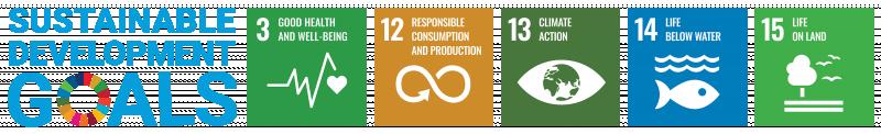 SDG-Icons_02